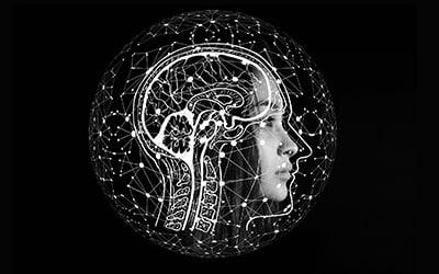 7 principes de la psychologie à appliquer au design